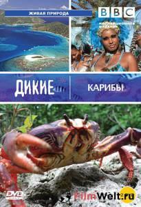 BBC: Дикие Карибы (сериал 2007 – ...)