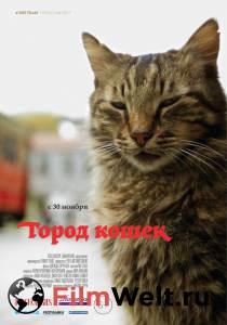 Посмотреть видео Город кошек бесплатно