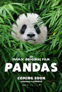 фильм Панды 3D онлайн бесплатно