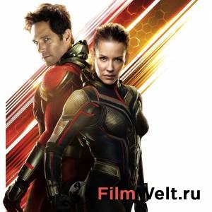 фильм Человек-муравей и Оса онлайн