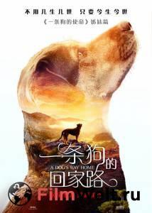 Посмотреть фильм Путь домой 2019 бесплатно
