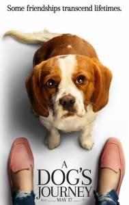 Посмотреть видео Собачья жизнь2 2019 онлайн